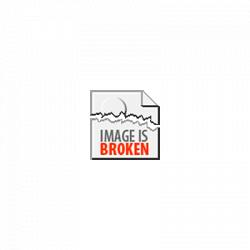 Flamingo Wine Glass, 10 High, 16 Ounces In Gift Box